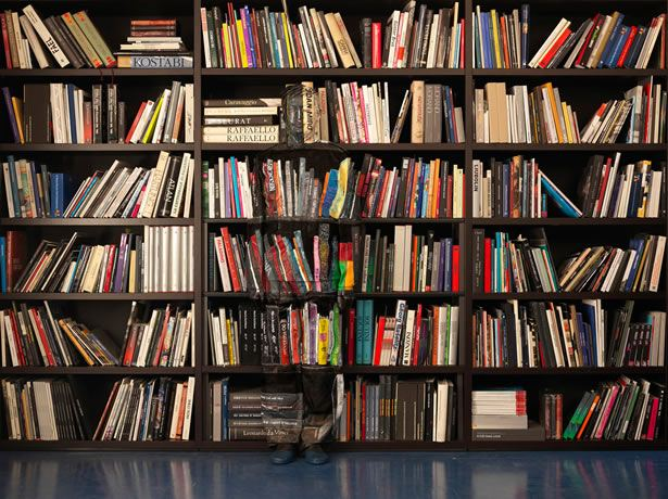 Is the art of literature in great jeopardy?