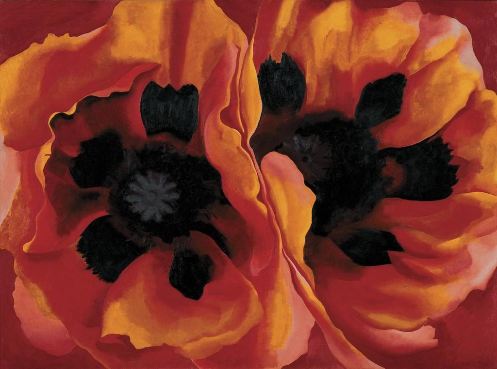 Oriental Poppies - Tate