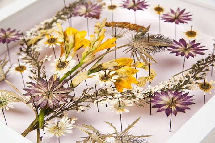 The art of pressed flowers - Pressed flower craft