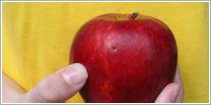 Health Issues avoided by having an apple