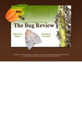 University of Illinois Extension: The Bug Review