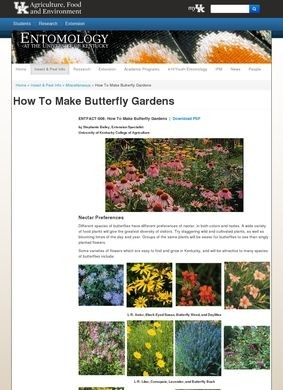 How to Make Butterfly Gardens