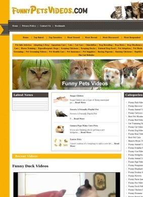 Funny Pets Videos